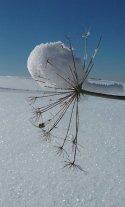 Neve sul monte Stino