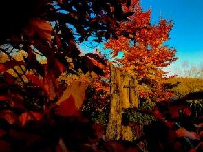 Pensiero d'autunno