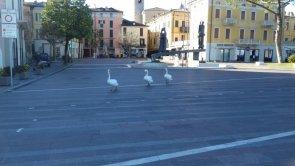 Giretto in piazza