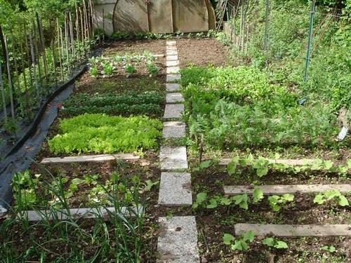 Sal l orto del comune for Foto case con giardino