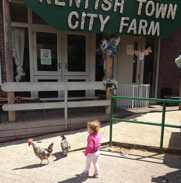city farmhouse blog s city farms 10170