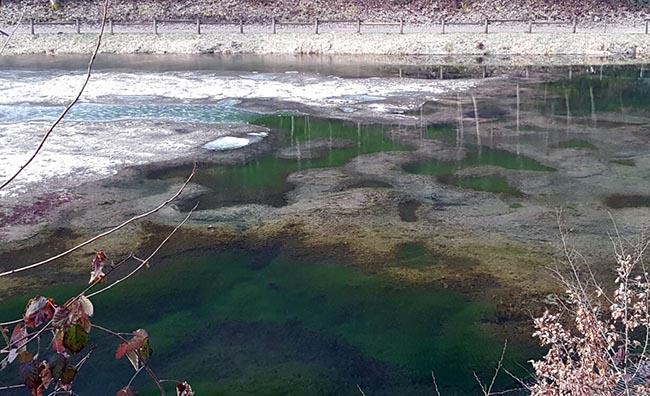 Casto mura valsabbia male la prima for Alghe laghetto artificiale